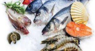 مطعم بن حمدام للأسماك الطازجة